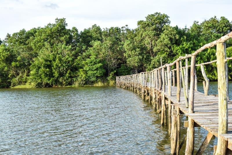 Мост к одичалому стоковые фотографии rf