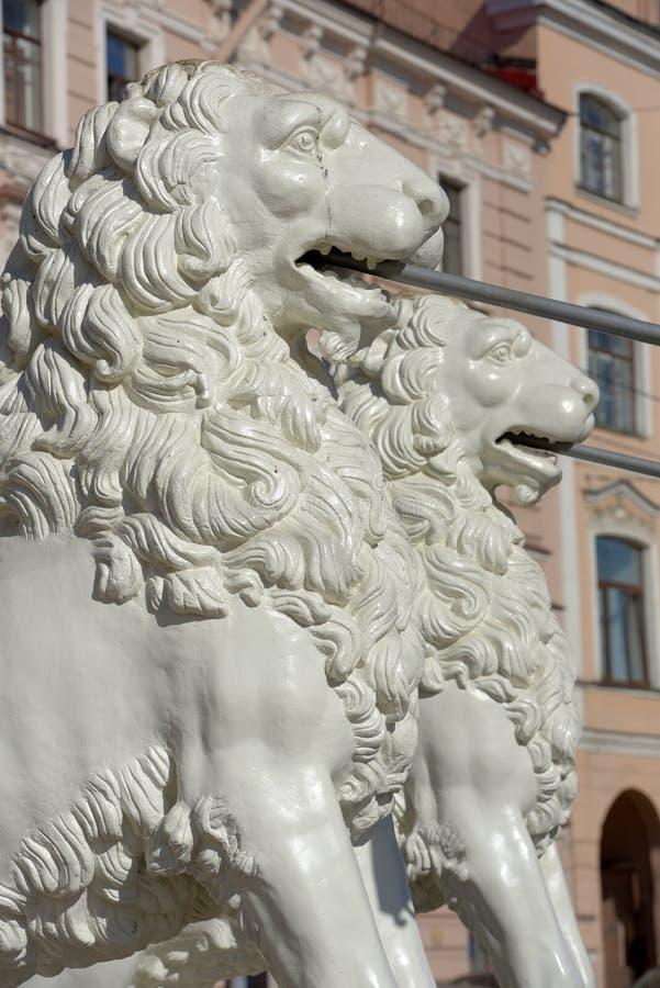 Мост льва в Санкт-Петербурге Белые львы утюга поддержки моста Исторический красивый мост достопримечательность стоковое изображение rf