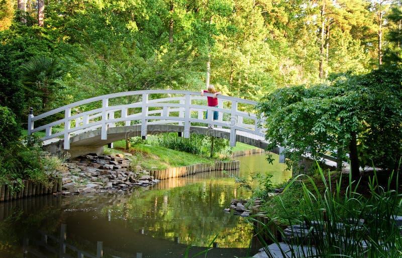 мост мальчика стоковые изображения rf