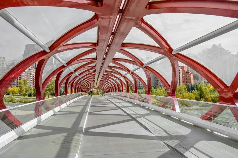 Мост мира стоковые фотографии rf