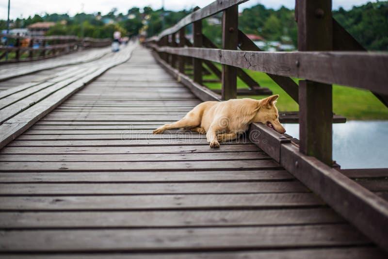 Мост моста понедельника деревянный над рекой в районе Sangkhlaburi, Kanchanaburi стоковое изображение
