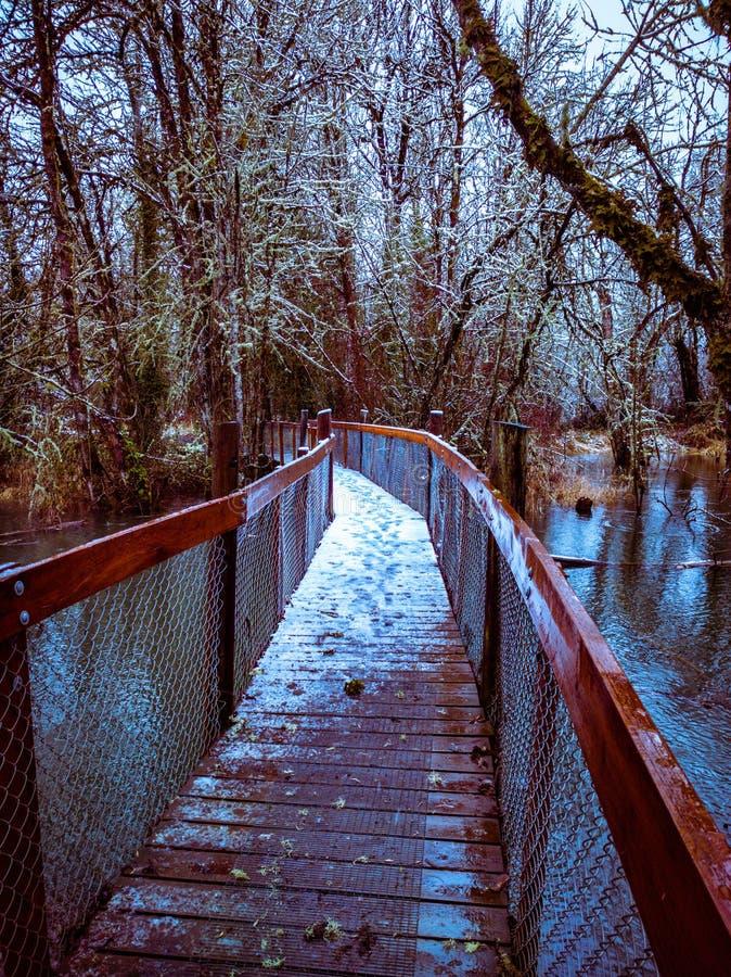 Мост над озером в Mary& x27; парк реки s в Philomath Орегоне во время зимы стоковая фотография rf