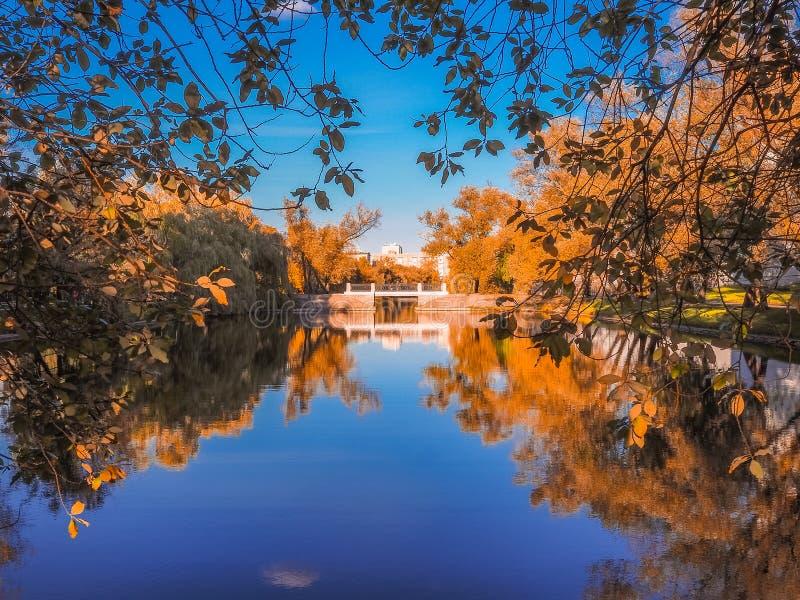Мост над речным руслом обрамленным желтым листопадом стоковое изображение rf