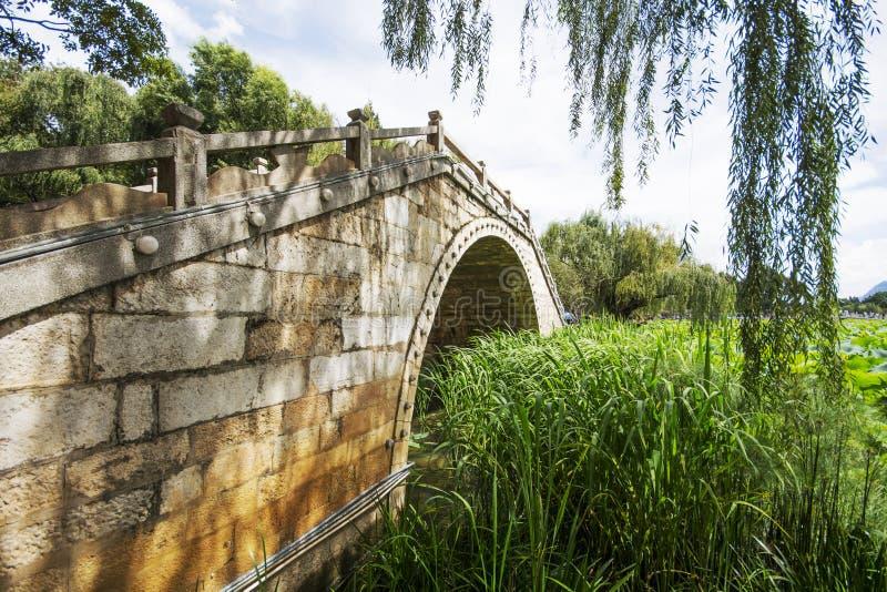 Мост на бассейне лотоса стоковое изображение