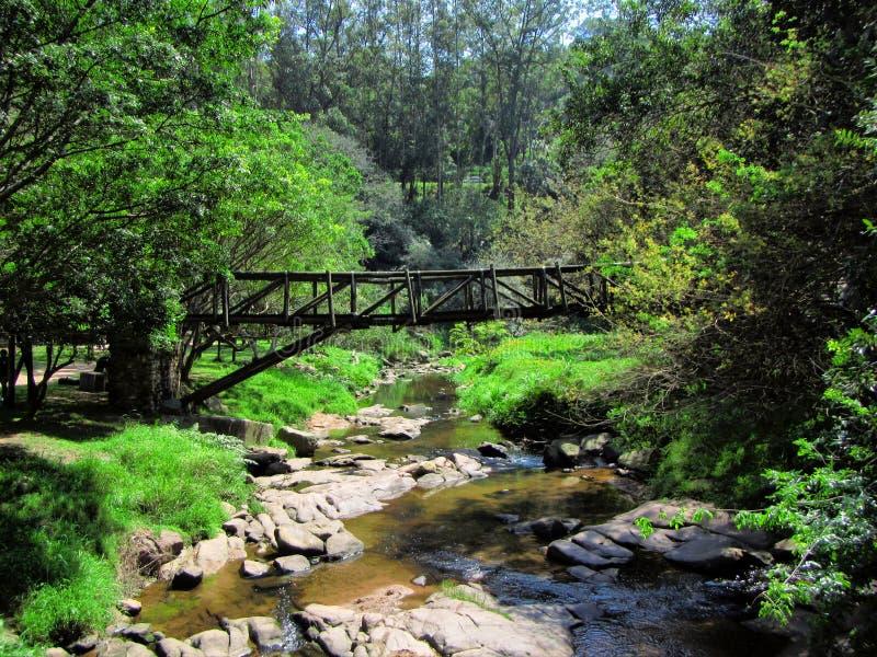 Мост над малым рекой стоковые изображения rf