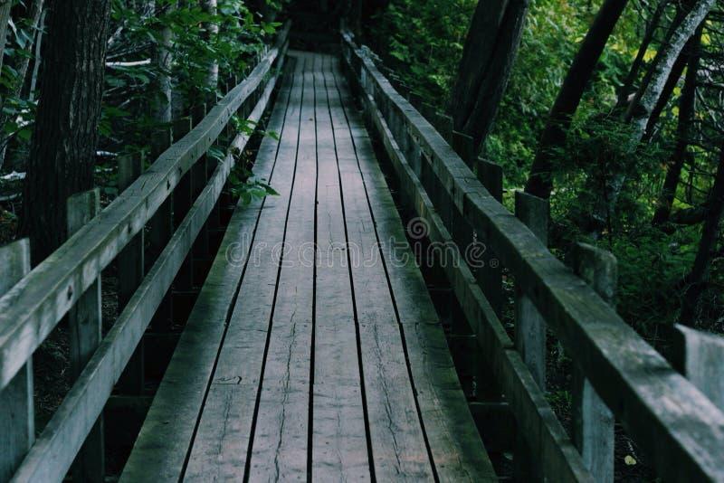 Мост на мостах стоковое фото