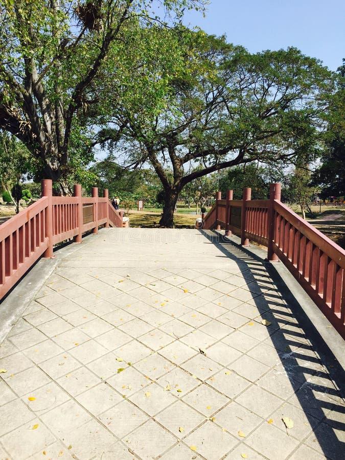 Мост на парке стоковое изображение rf