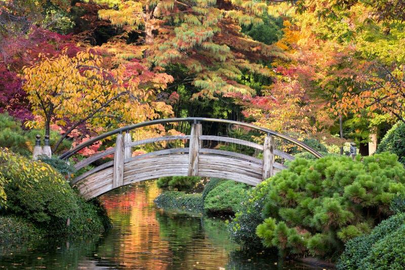 Мост над спокойными водами стоковое изображение