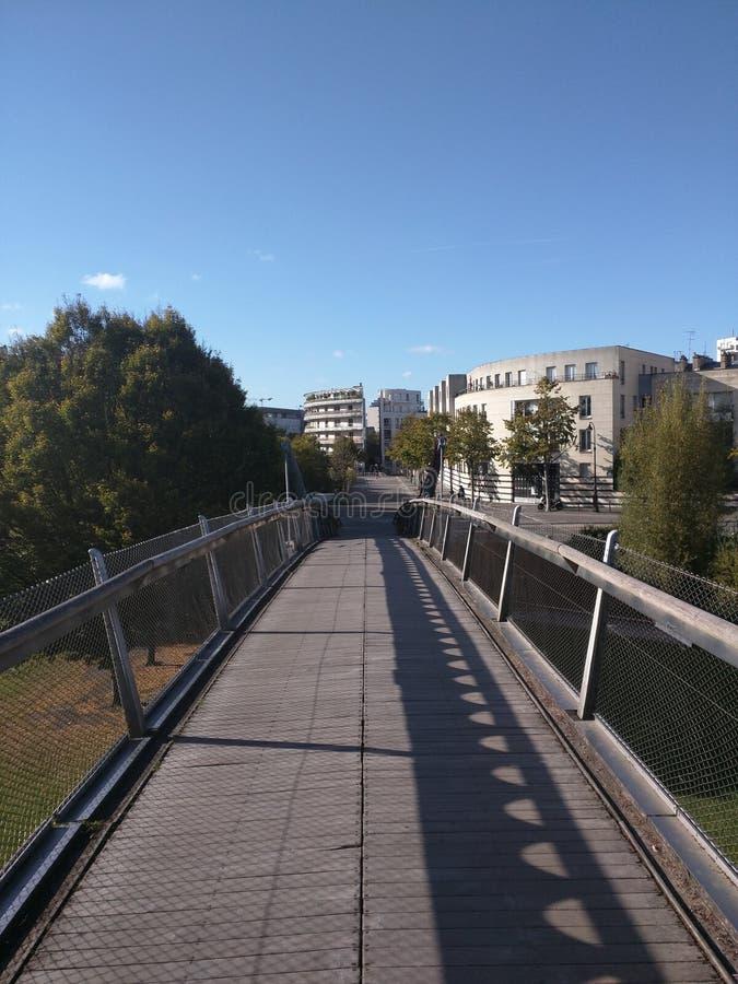 Мост окруженный деревьями стоковые изображения