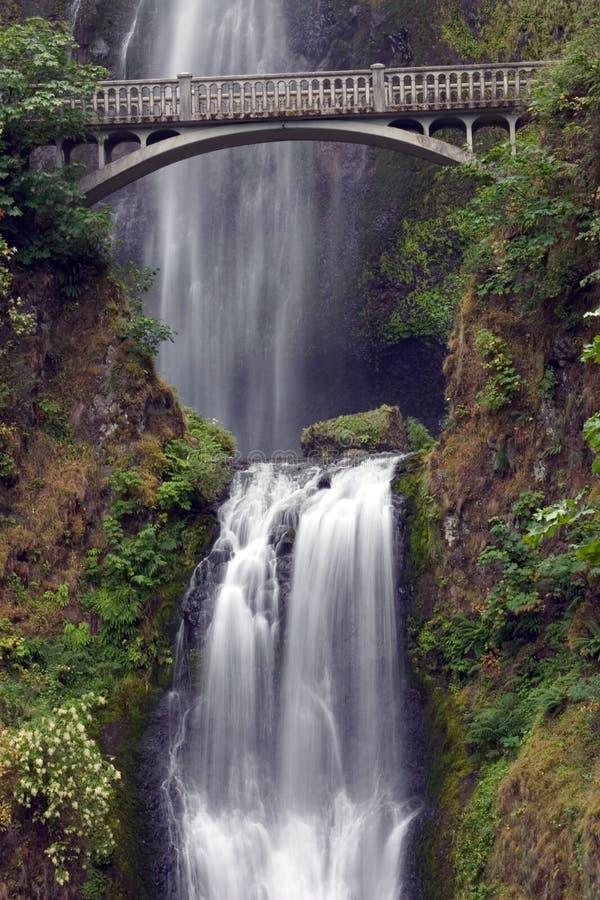 мост падает multnomah стоковые фото