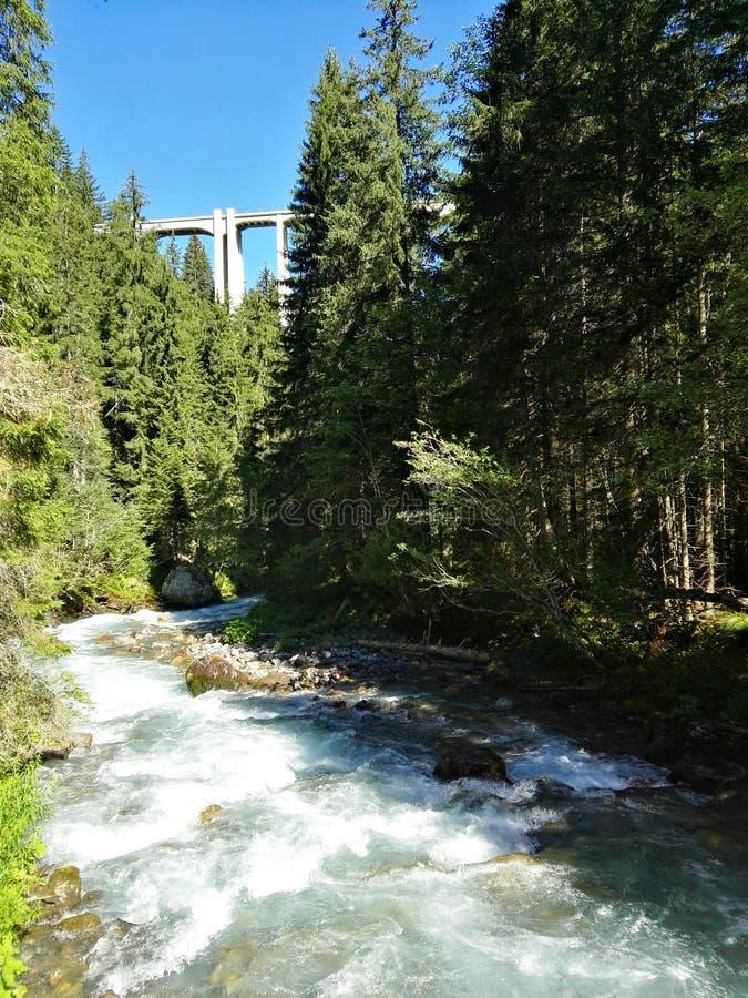Мост поезда стоковая фотография rf