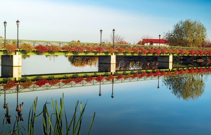Мост при цветки отражая в озере стоковое изображение rf