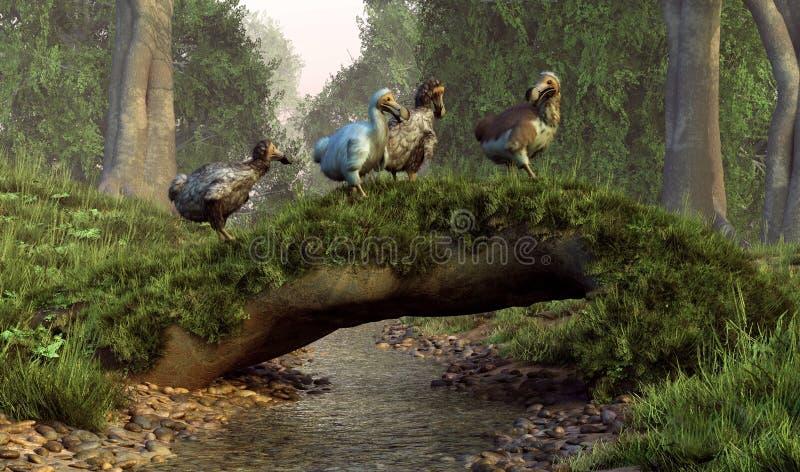Мост птицы додо иллюстрация штока