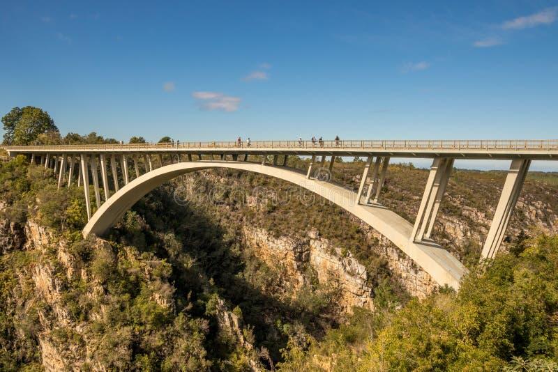 Мост реки штормов, Tsittsikamma, Южная Африка стоковое изображение rf