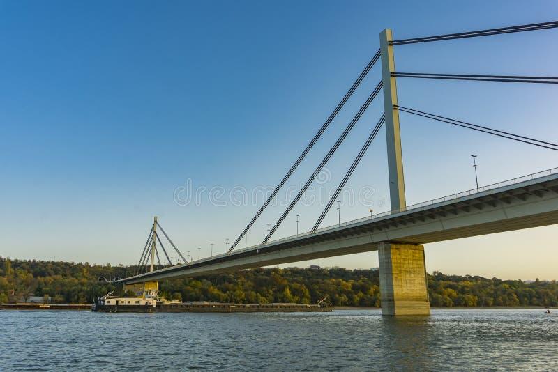 Мост свободы большинств Slobode на Дунае в Novi грустном, Сербии стоковые фотографии rf