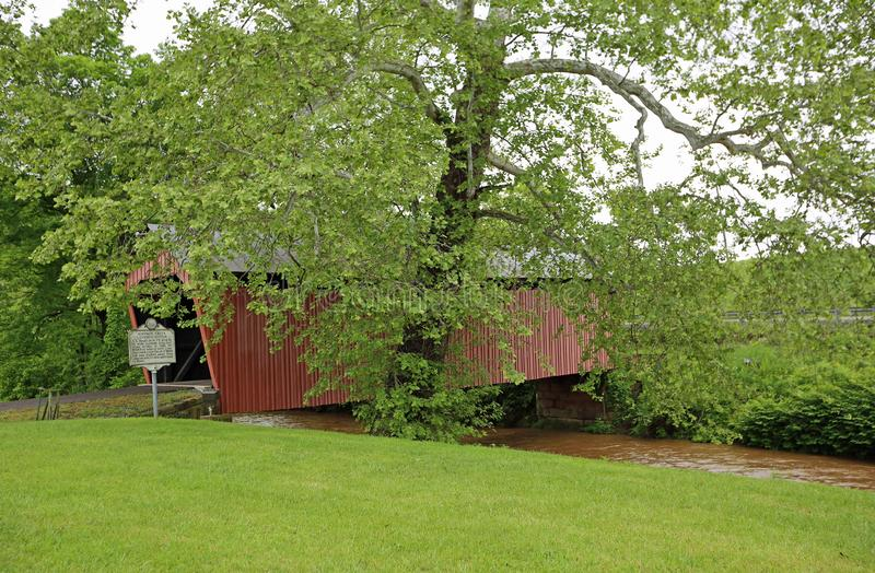 Мост Симпсон за деревом стоковое изображение rf