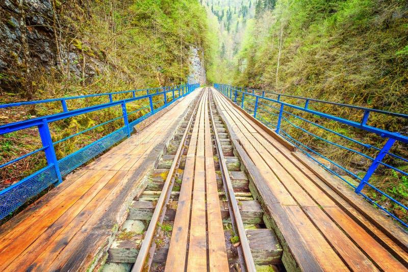 Мост с железной дорогой узкой колеи стоковое фото