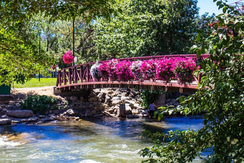 Мост с цветками смертной казни через повешение на Реке Truckee в Reno, Неваде стоковая фотография rf