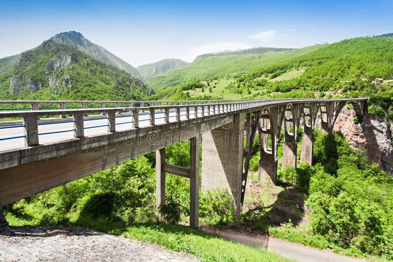 Мост Тары стоковая фотография
