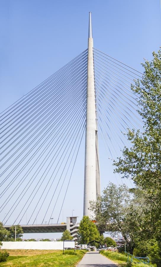 Мост Ada в Белграде, Сербии стоковое изображение