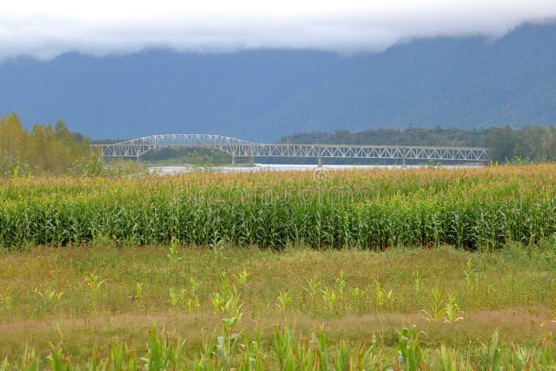 Мост Agassiz и сельские окрестности стоковая фотография rf