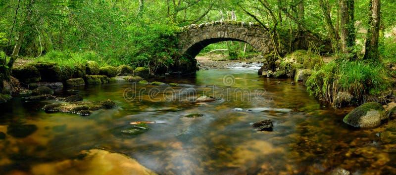 Мост Dartmoor стоковое фото rf
