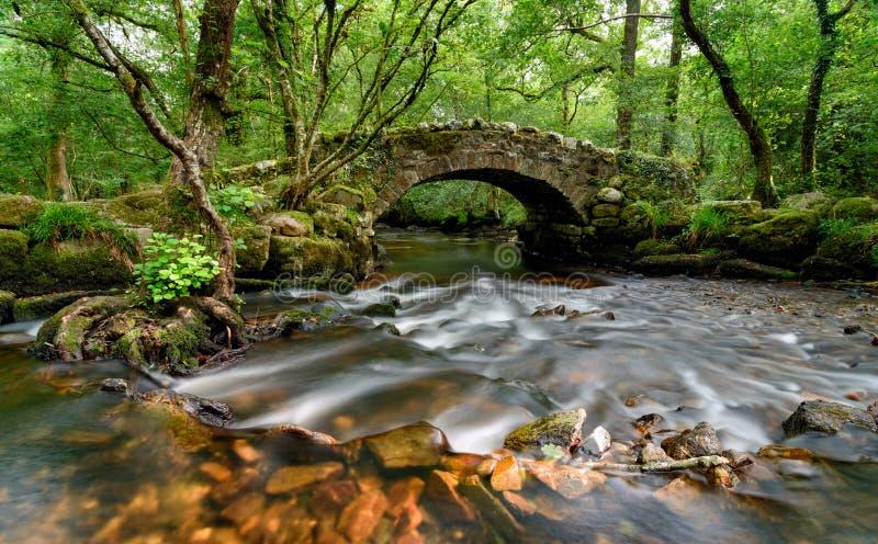 Мост Dartmoor стоковые изображения