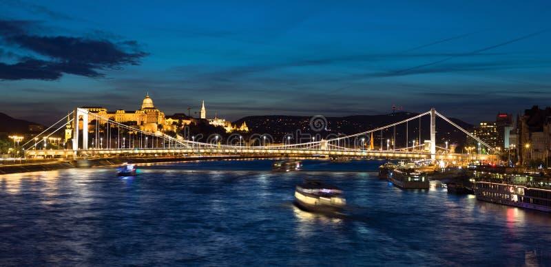 Мост Elisabeth на взгляде ночи Будапешта стоковые изображения rf