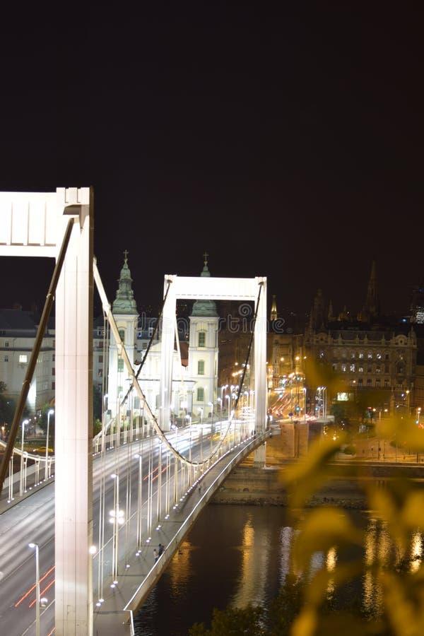 Мост Elisabeth на ноче стоковые фотографии rf