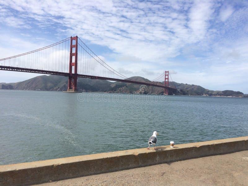 Мост Goldman стоковая фотография
