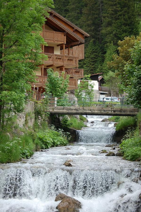 Мост Green River дерева природы стоковое фото rf