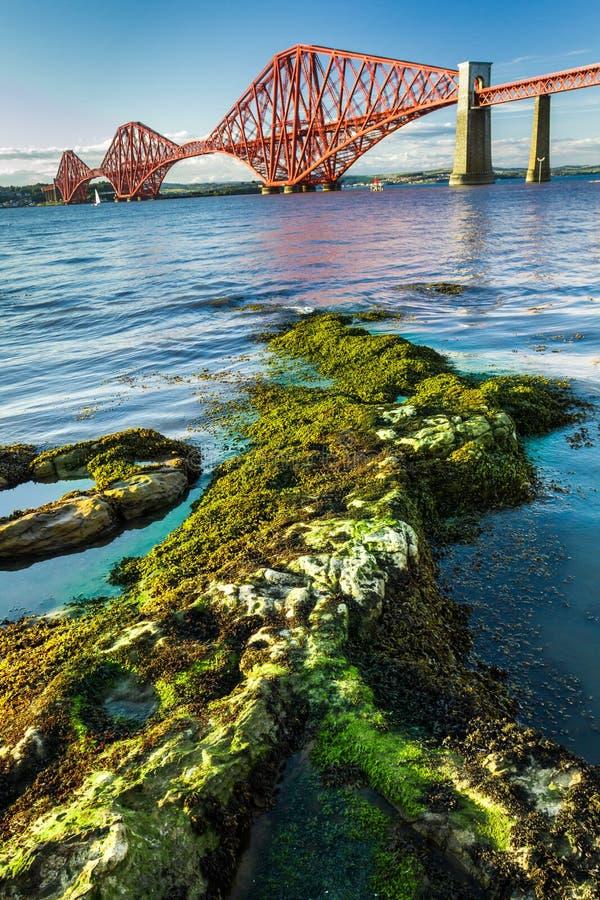 Мост Seaweed и вперед дороги в Шотландии стоковое изображение