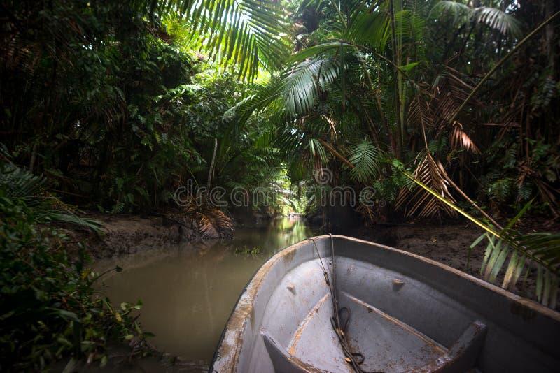 Моторная лодка в джунглях Папуаой-Нов Гвинеи стоковые фото