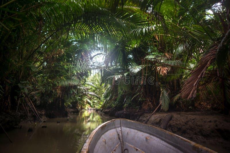 Моторная лодка в джунглях Папуаой-Нов Гвинеи стоковые фотографии rf