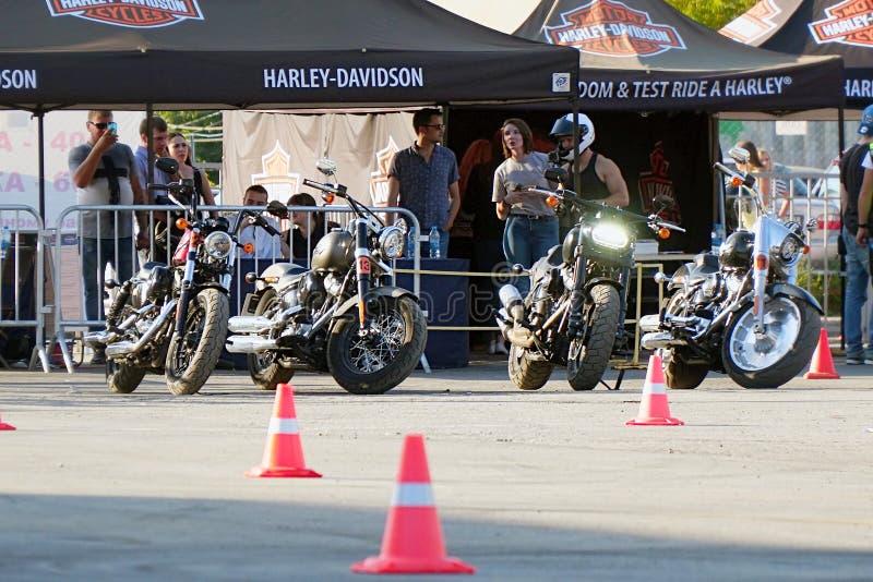 Мотоциклы Harley Davidson в месте для стоянки стоковые фото