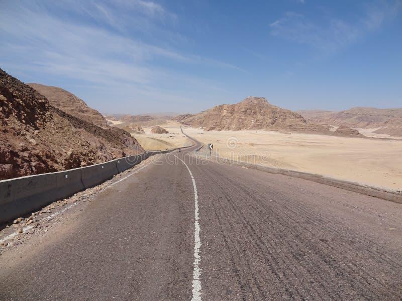 Мотоциклист едет на дороге горы стоковое изображение rf