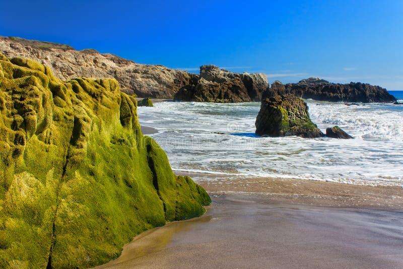 Мох покрыл утесы на пляже положения Лео Carillo стоковые фото