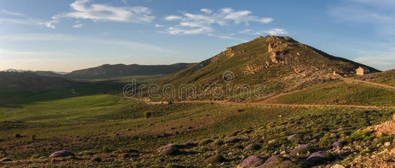 Мох покрыл долину гористой местности в средней горной цепи атласа в s стоковое изображение