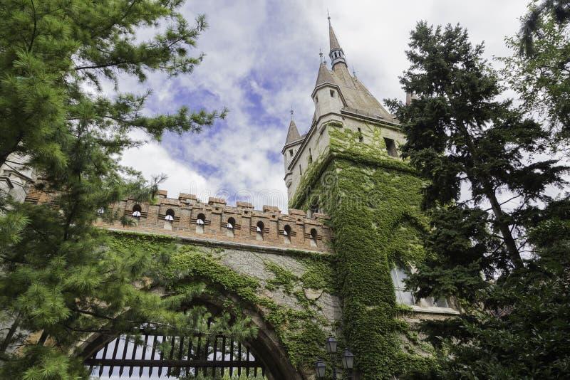 Мох покрыл стены замка с голубым небом в Будапеште, Венгрии стоковая фотография