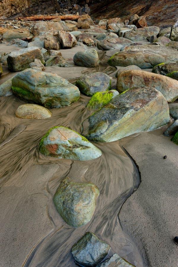 Мох покрыл утесы на пляже стоковые фото