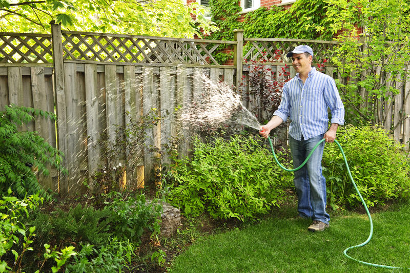 мочить человека сада стоковое изображение rf