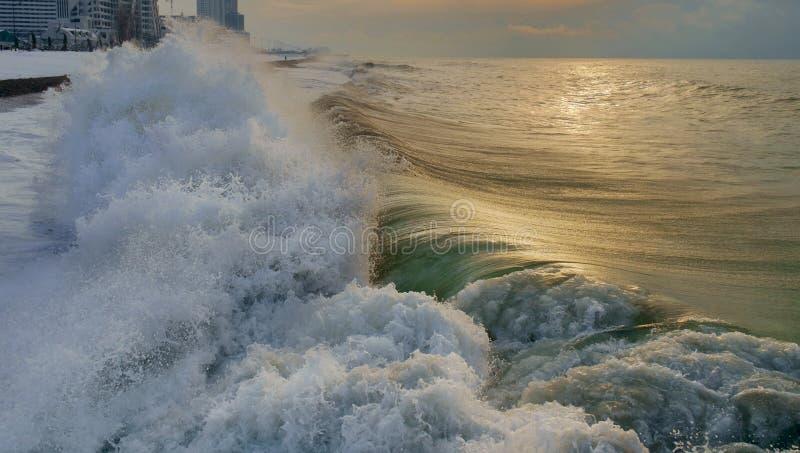 Мощная зеленая пенообразная волна задавливая на береге стоковое фото rf