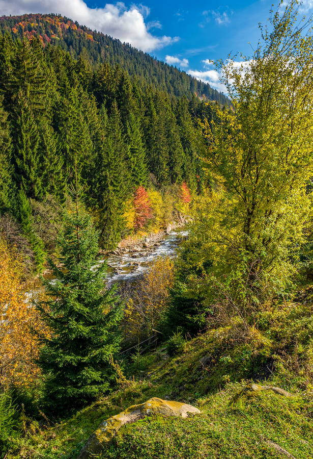 Мощный ручеек горы с скалистым берегом в долине стоковая фотография rf