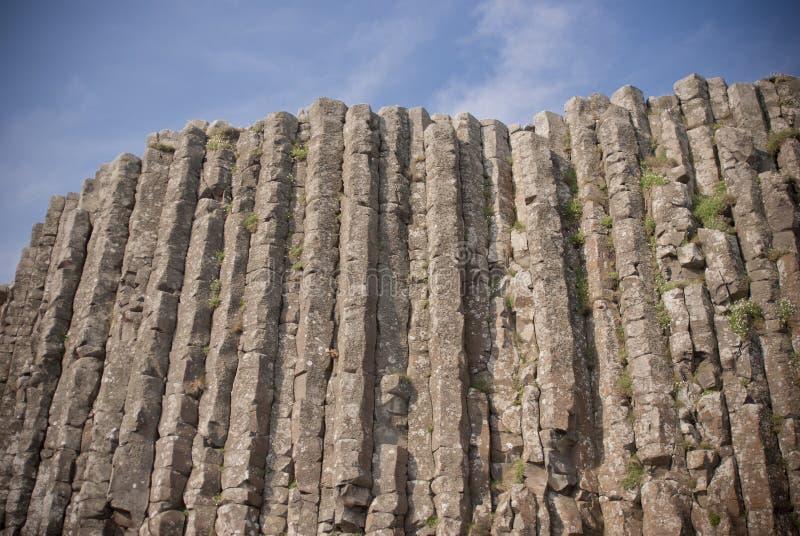 мощёная дорожка гигантская Ирландия северный s стоковые изображения rf