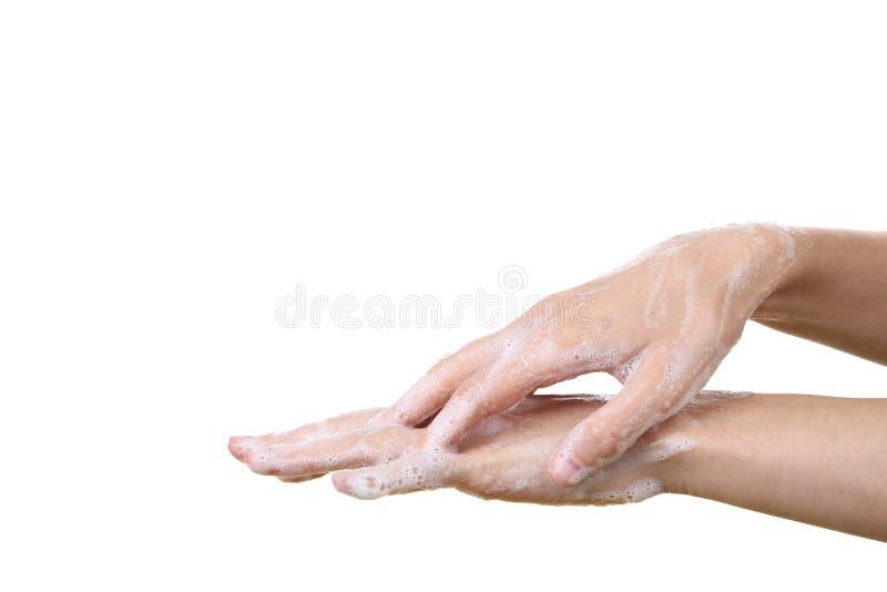 Моя руки стоковая фотография