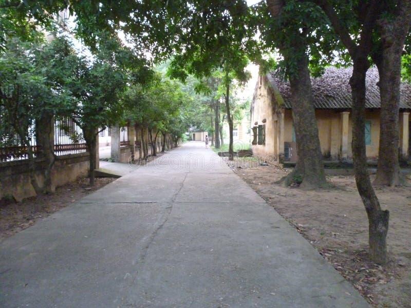 Моя школа на задней части стоковая фотография rf