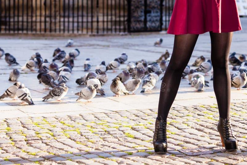 Мода осени Женские ноги в стильных ботинках внешних стоковое изображение