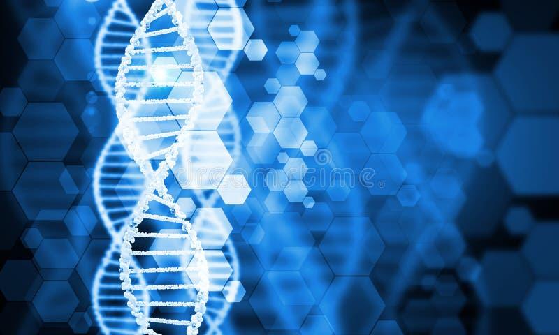Молекула дна стоковые изображения