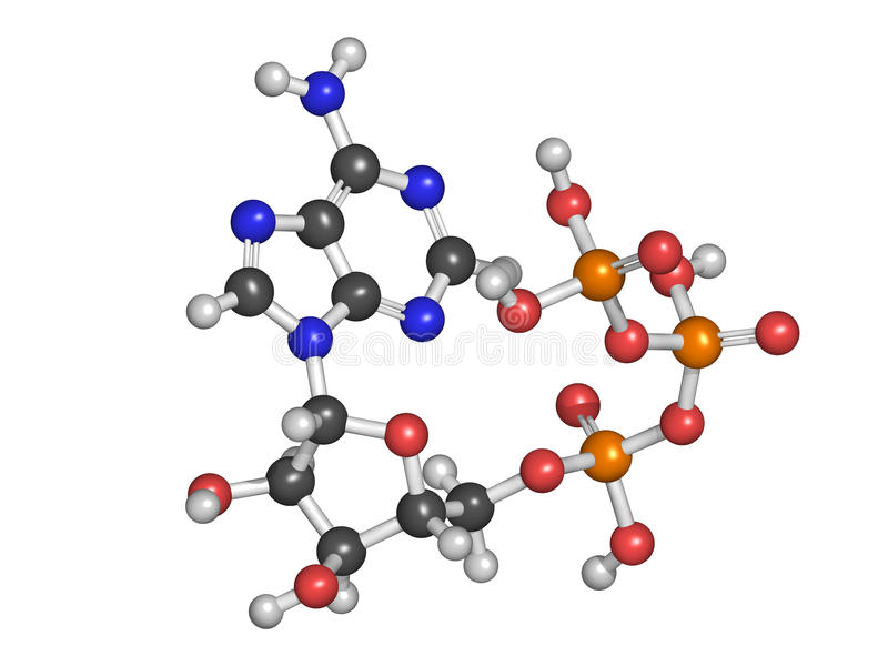 Молекула перехода энергии аденозинтрифосфорной кислоты (ATP), химикат иллюстрация штока