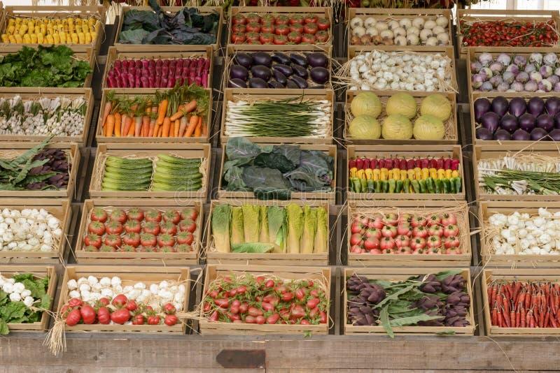 Модель-макет vegetable еды на Decumano, милана 2015 ЭКСПО стоковые изображения